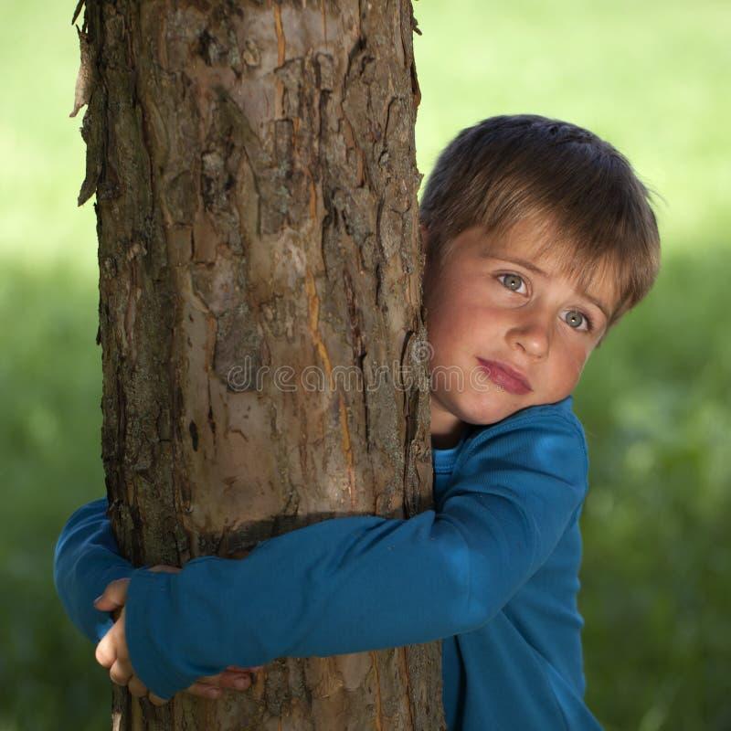 Weinig jongen die een boom omhelst stock fotografie