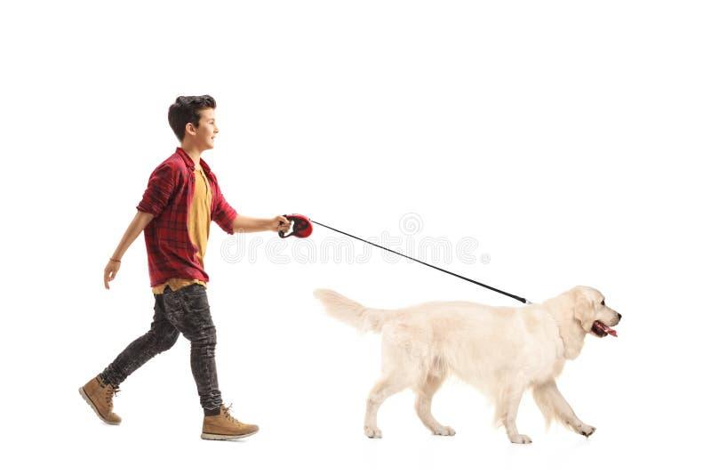 Weinig jongen die een hond lopen royalty-vrije stock fotografie