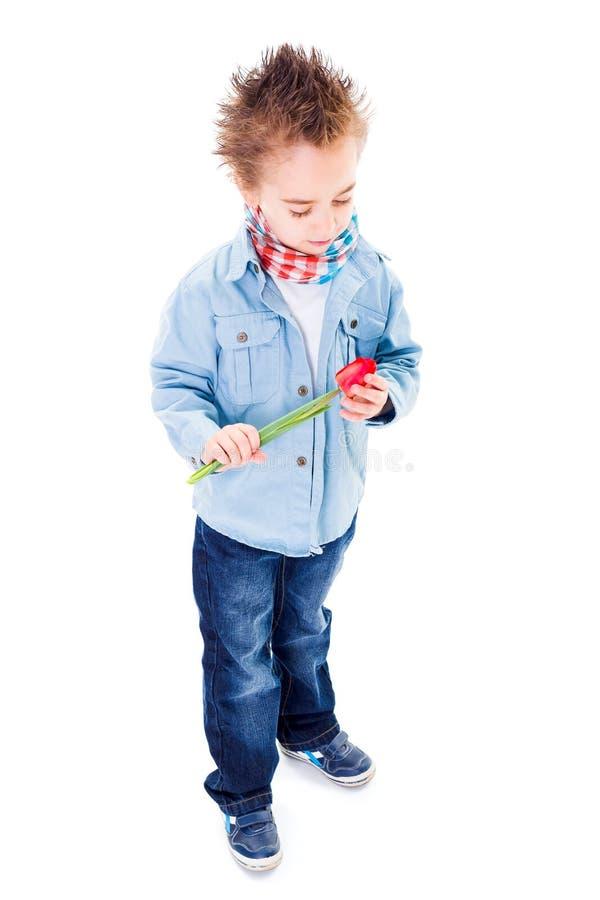 Weinig jongen die een tulp houden stock foto