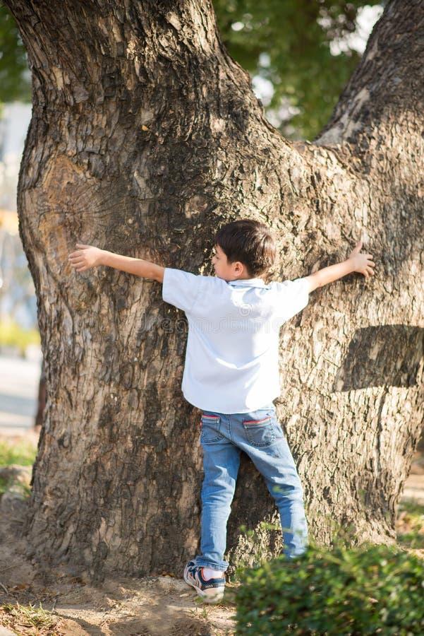 Weinig jongen die grote boom houden controleren die hoe groot het is stock foto's