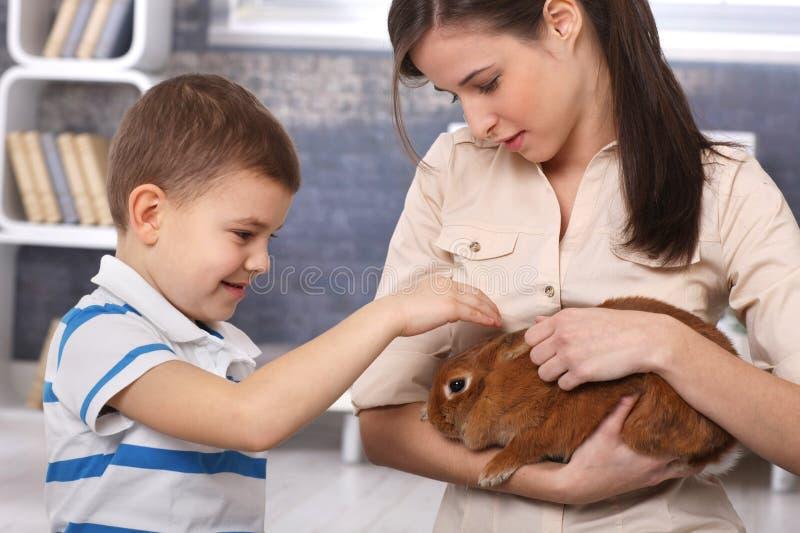 Weinig jongen die huisdierenkonijn handbediend door mum streelt stock afbeeldingen