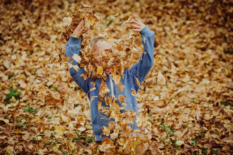 Weinig jongen die met bladeren in de herfstdaling spelen royalty-vrije stock foto's