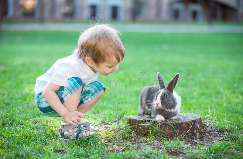 Weinig jongen die met konijn spelen stock afbeelding
