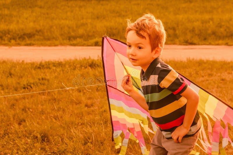 Weinig jongen die met vlieger op het gebied op de zomerdag lopen in het park stock fotografie