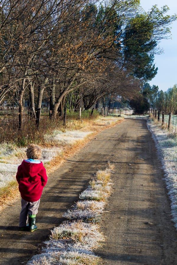 Weinig jongen die onderaan een ijzige landweg in de ochtend lopen stock afbeelding