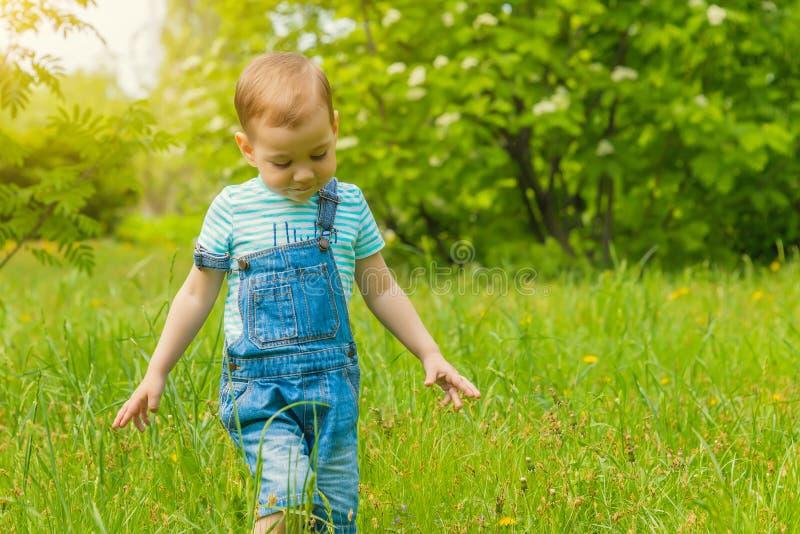 Weinig jongen die op het gras in het Park lopen stock afbeeldingen