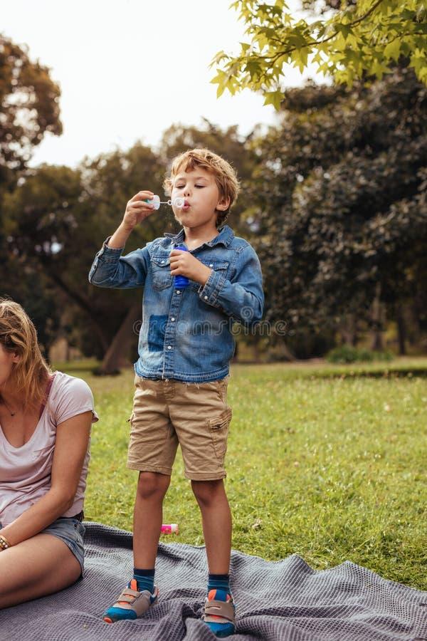 Weinig jongen die pret op picknick heeft bij het park royalty-vrije stock fotografie