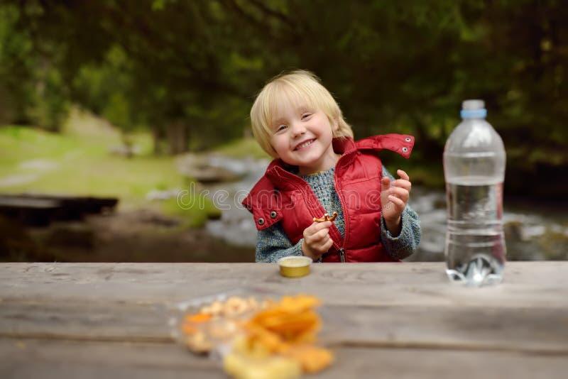 Weinig jongen eet snacks tijdens picknick op kust van bergrivier in Zwitserland royalty-vrije stock foto