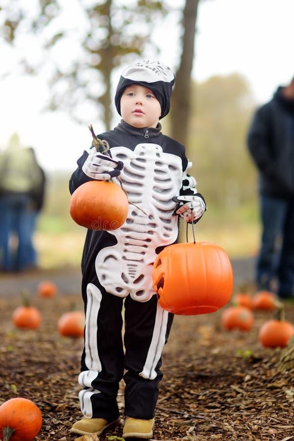 Weinig jongen in eng skeletkostuum bij Halloween-vieringenpartij in bos royalty-vrije stock foto's