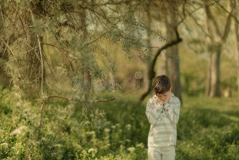 Weinig jongen in het bos stock fotografie