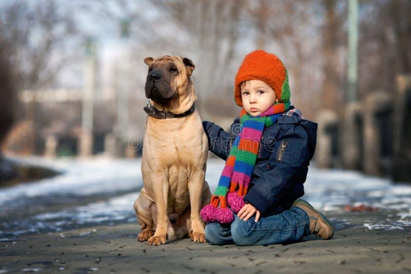 Weinig jongen in het park met zijn hondvrienden stock afbeeldingen