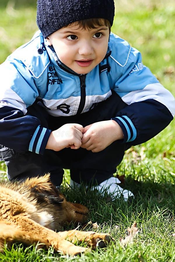 Weinig jongen met hond stock afbeeldingen