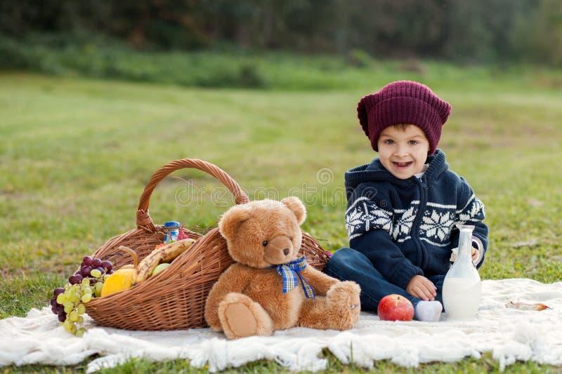 Weinig jongen op een picknick royalty-vrije stock afbeelding