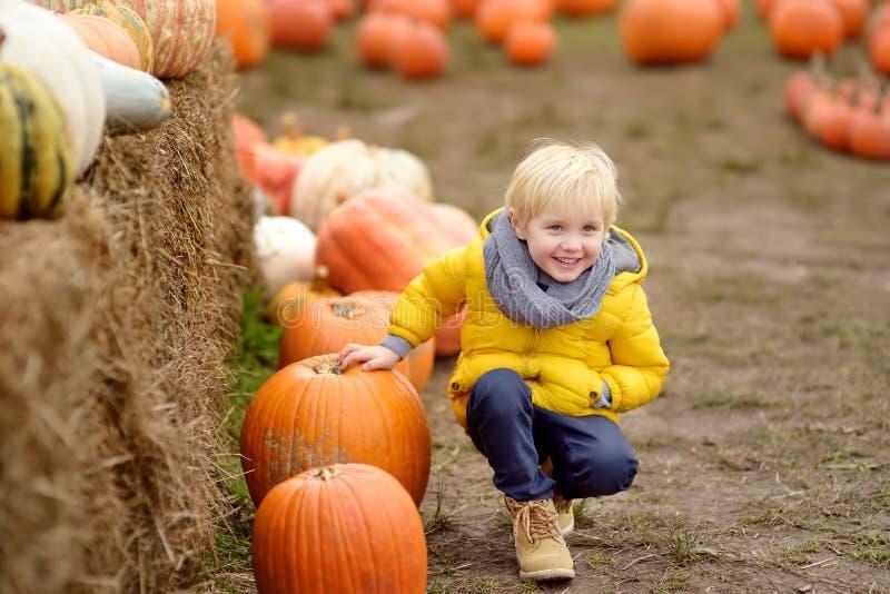 Weinig jongen op een reis van een pompoenlandbouwbedrijf bij de herfst Kindzitting dichtbij reuzepompoen stock afbeeldingen