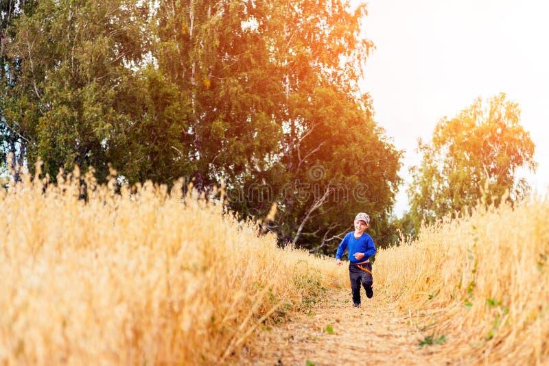 Weinig jongen op een tarwegebied stock foto