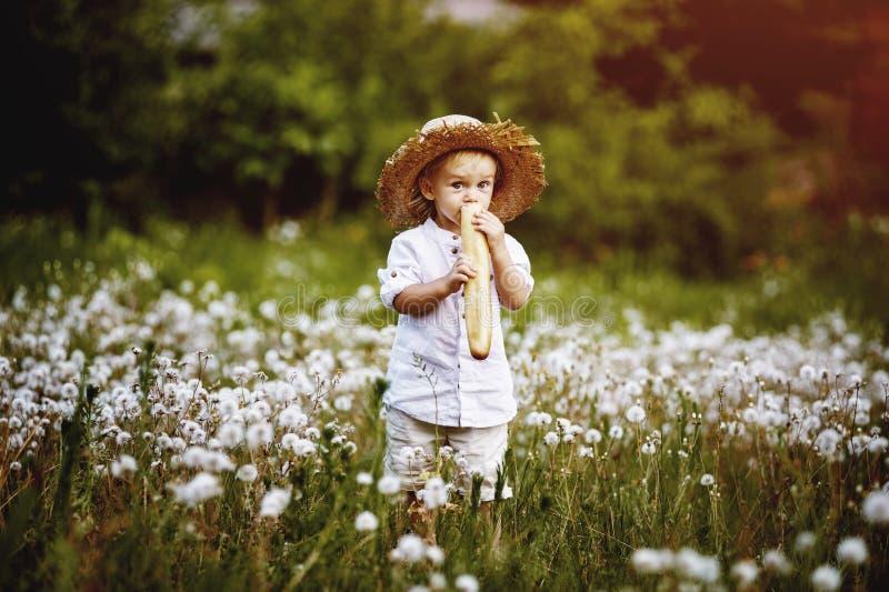Weinig jongen op gebied met paardebloemen, kleedde zich in retro kleren stock afbeeldingen