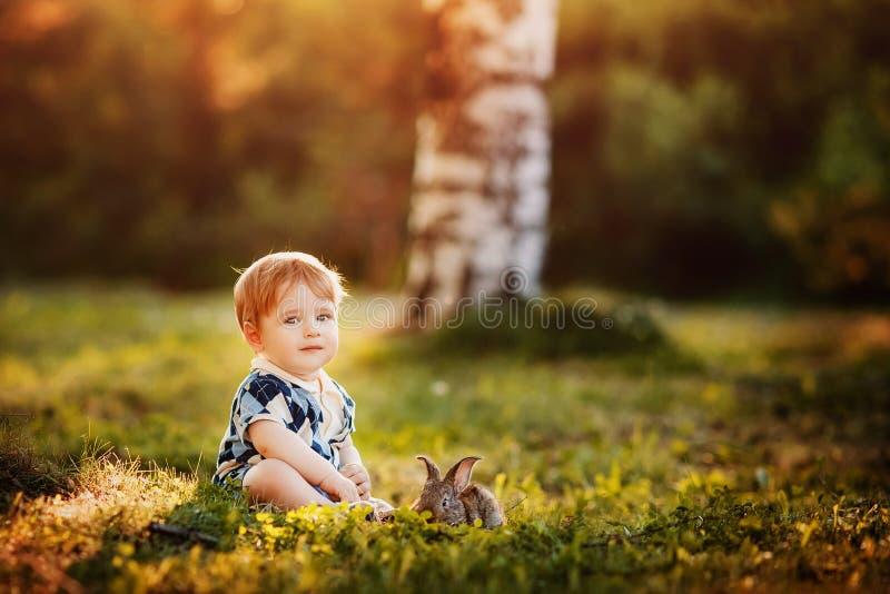 Weinig jongen speelt met een konijn in het park royalty-vrije stock afbeeldingen