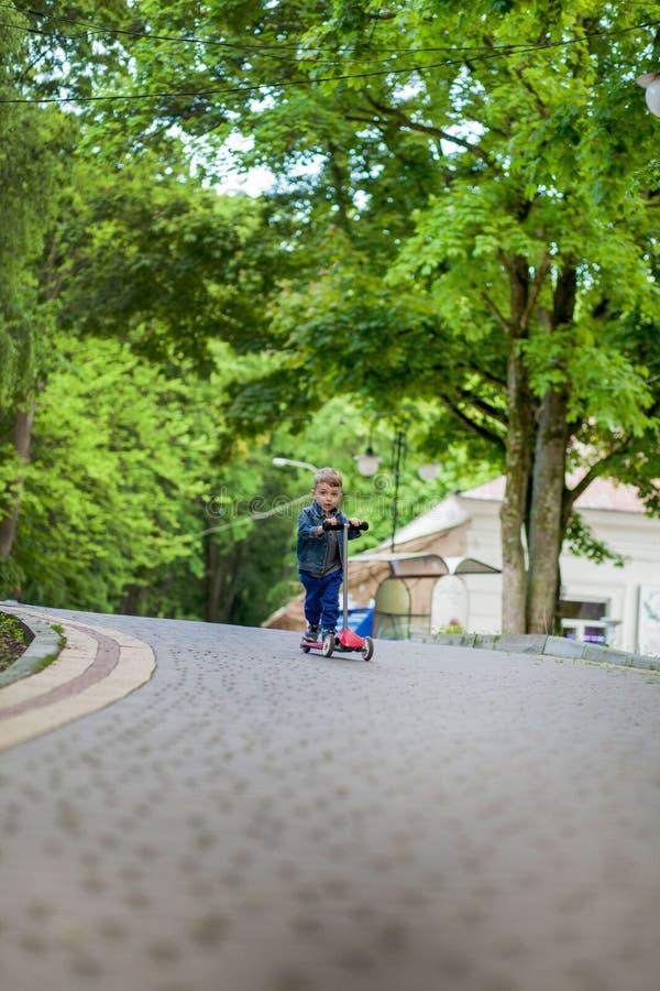 Weinig jongens berijdende autoped in stadspark in aummer Jonge geitjessporten in openlucht Het gelukkige kind spelen met zijn aut royalty-vrije stock afbeelding