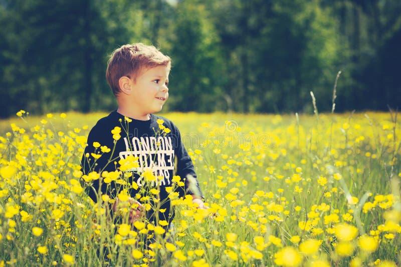 Weinig jongenskind op een prachtig gebied van gele bloemen royalty-vrije stock afbeelding