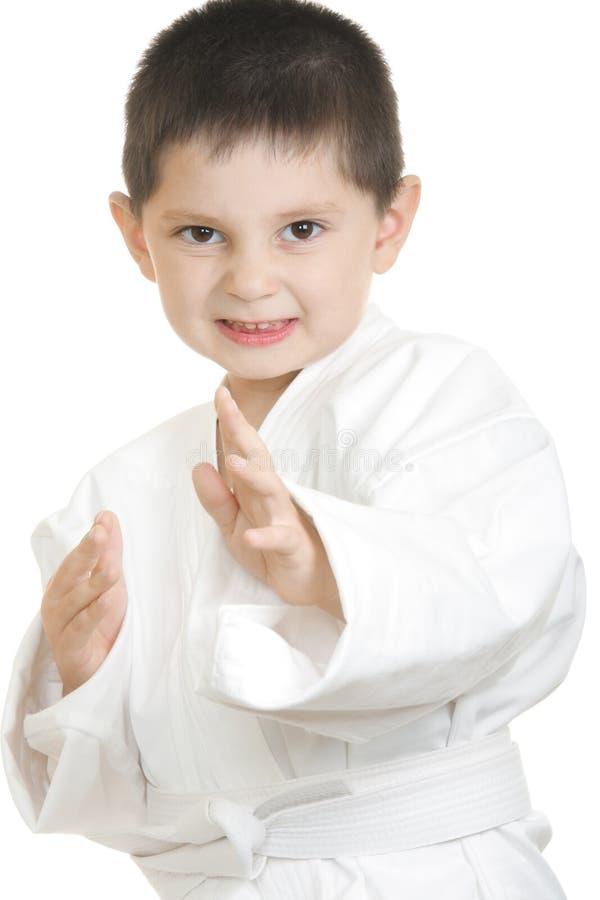Weinig karatejong geitje stock fotografie