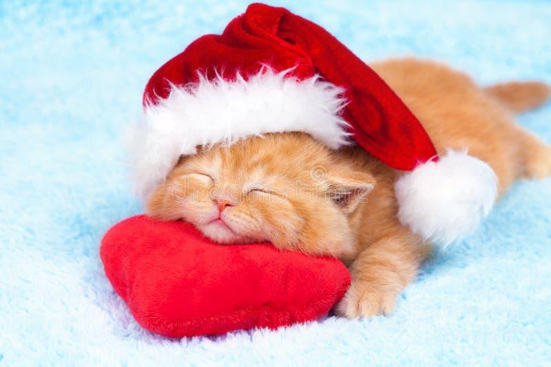 Weinig katje die de hoed van de Kerstman dragen royalty-vrije stock afbeeldingen
