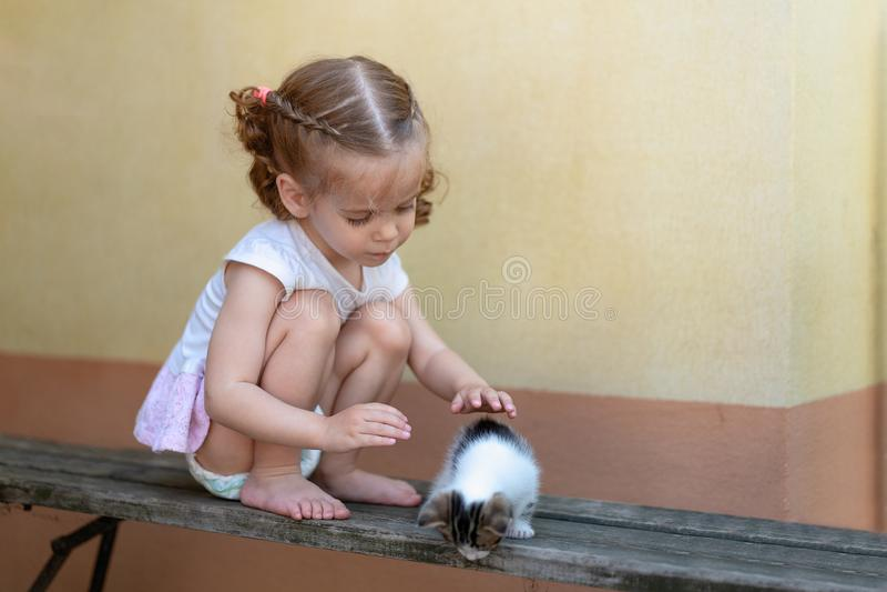Weinig Kaukasisch meisje die op een de zomerdag spelen met een klein katje royalty-vrije stock afbeeldingen