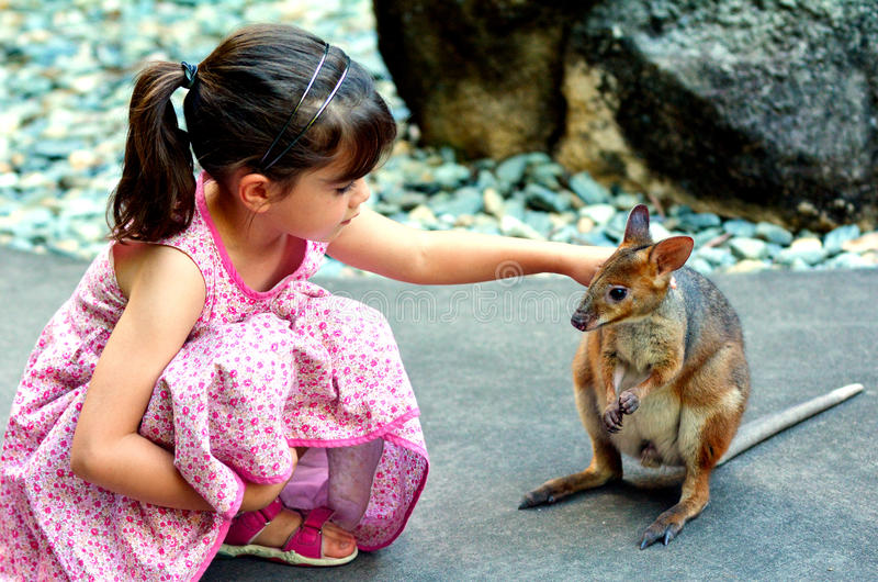 Weinig kind die een wallaby in Queensland, Australië petting royalty-vrije stock fotografie