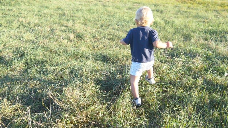 Weinig kind gaat op groen gras bij het gebied bij zonnige dag Baby die bij het gazon lopen openlucht Peuter die leert te lopen royalty-vrije stock afbeelding