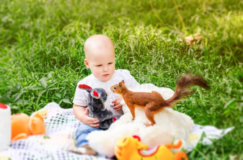 Weinig kindlente in het park kijkt verbaasd op onbeschofte eekhoorn stock afbeeldingen