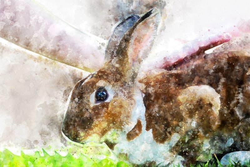 Weinig konijn op groen gras in de zomerdag stock afbeeldingen