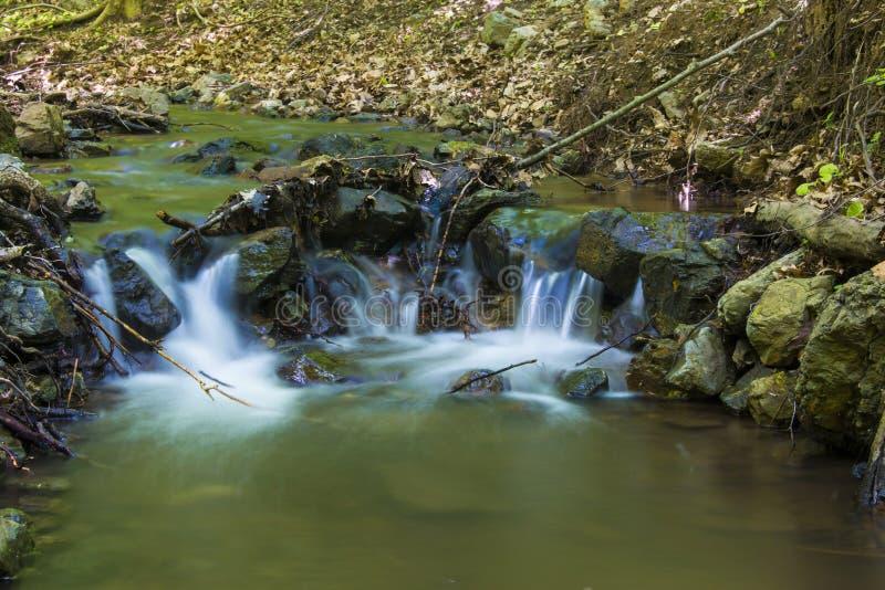 Weinig kreek in het bos royalty-vrije stock foto's
