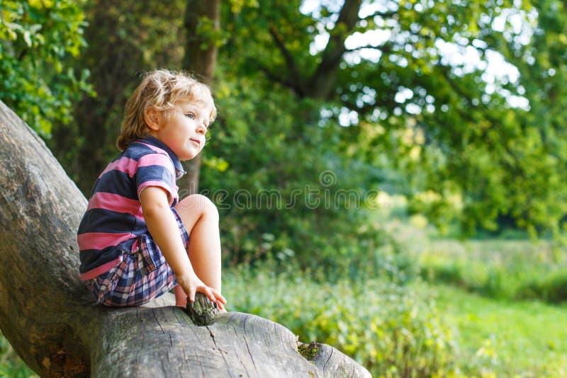 Weinig leuke peuterjongen die pret op boom in bos hebben stock afbeeldingen