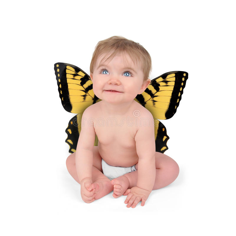 Weinig Leuke Vlinder van de Baby op Witte Achtergrond royalty-vrije stock afbeeldingen