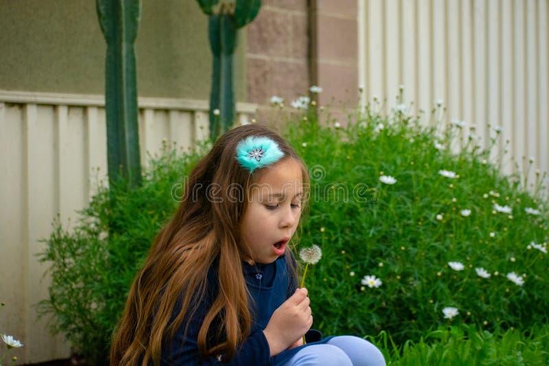 Weinig meisje van Latina in tuin die op paardebloem blazen stock afbeelding