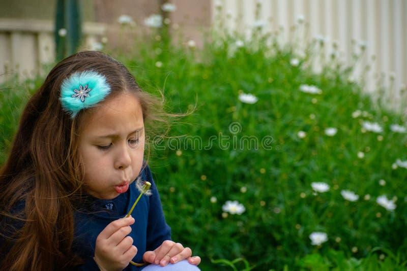 Weinig meisje van Latina in tuin die op paardebloem blazen stock foto's
