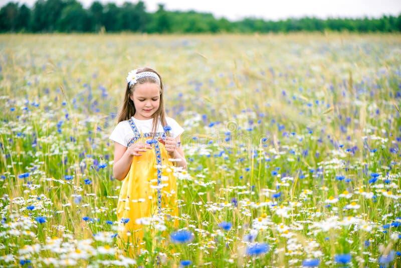 Weinig mooi meisje in het gele Russische kleding plukken bloeit op gebied van wilde bloemen op de zomerdag royalty-vrije stock foto's