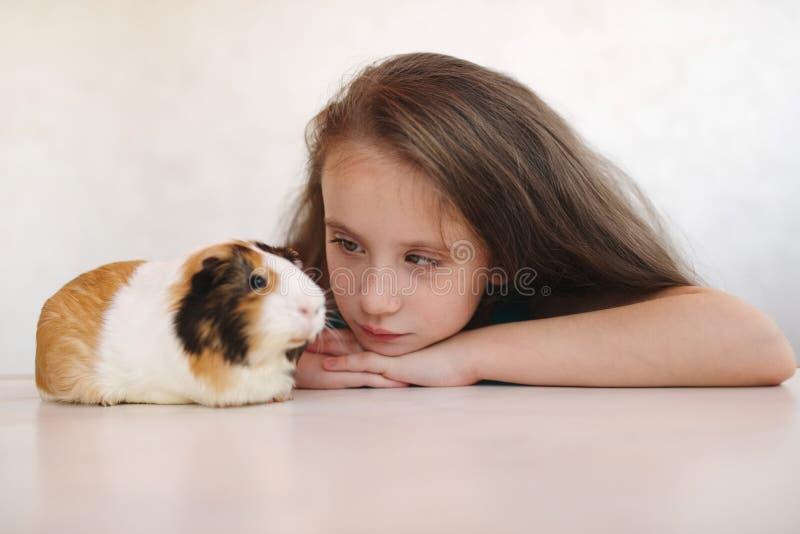 Weinig mooi meisje met proefkonijn royalty-vrije stock afbeeldingen