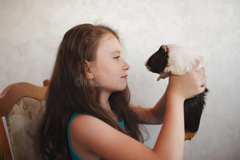 Weinig mooi meisje met proefkonijn royalty-vrije stock afbeelding