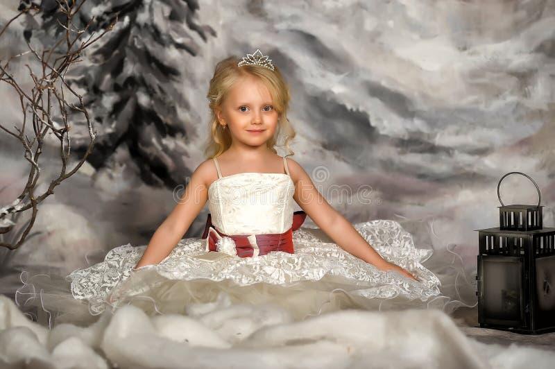 Weinig prinses met tiara stock fotografie