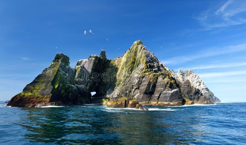 Weinig Skellig-Eiland, huis aan vele diverse zeevogels en de tweede - grootste jan-van-gentkolonie in de wereld, Provincie Kerry, stock afbeeldingen