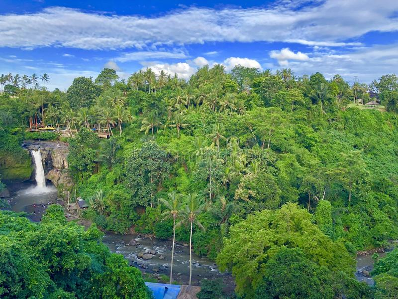 Weinig waterval in de enorme wildernis stock foto's