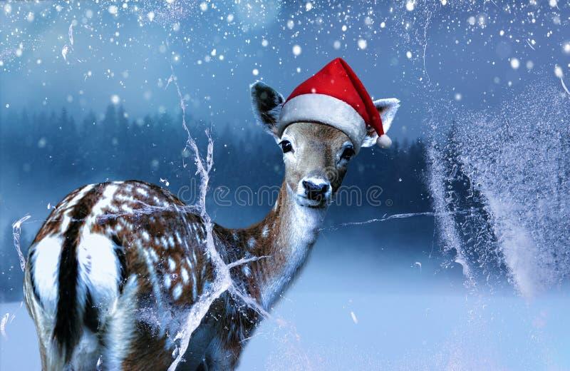 Weinig zoete fawn in rode Santa Claus-hoed bekijkt binnen een bevroren venster bij Heilige Nacht royalty-vrije stock afbeeldingen
