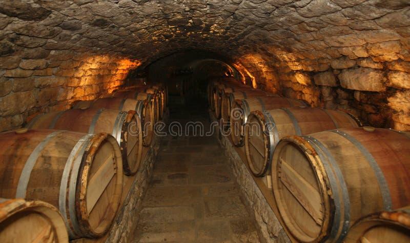 Weinkeller lizenzfreie stockfotos