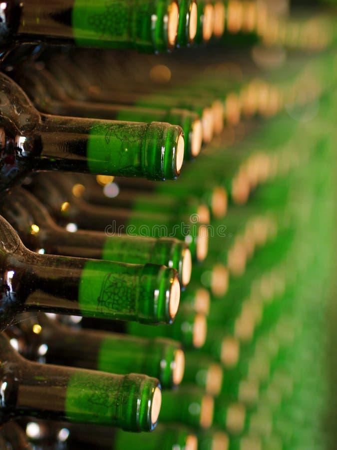 Weinkellerei lizenzfreie stockfotos
