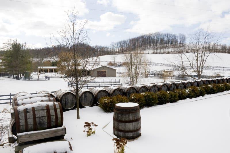 Weinkellerei während des Winters stockfoto