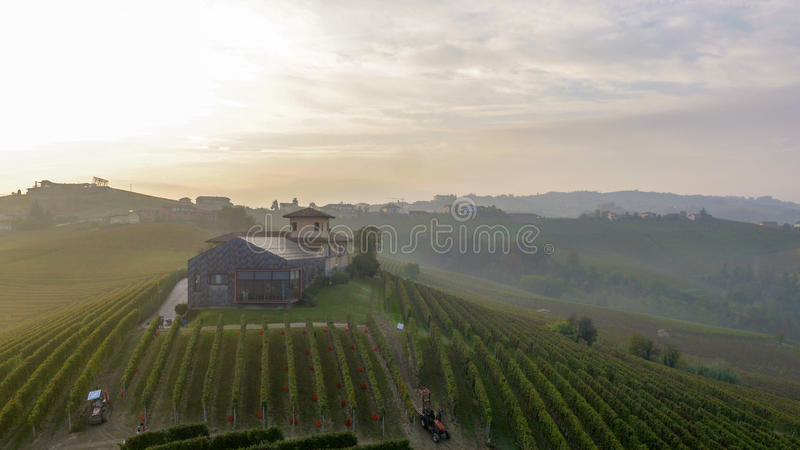 Weinkellereiitalien-barolo stockfotografie