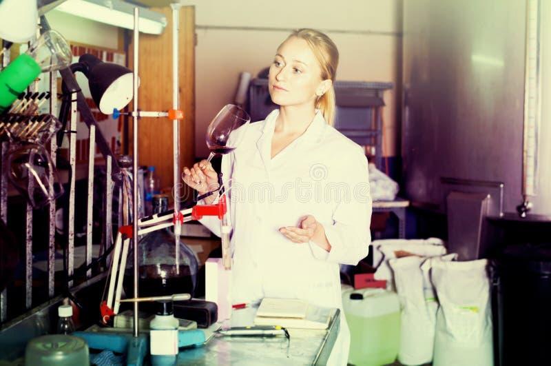 Weinkellereitechniker im Labor lizenzfreie stockfotos