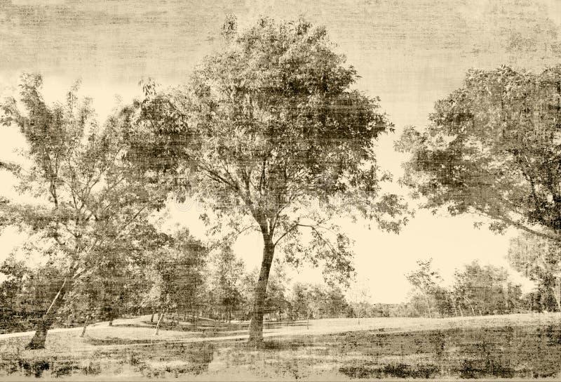 Weinlese-Bäume vektor abbildung