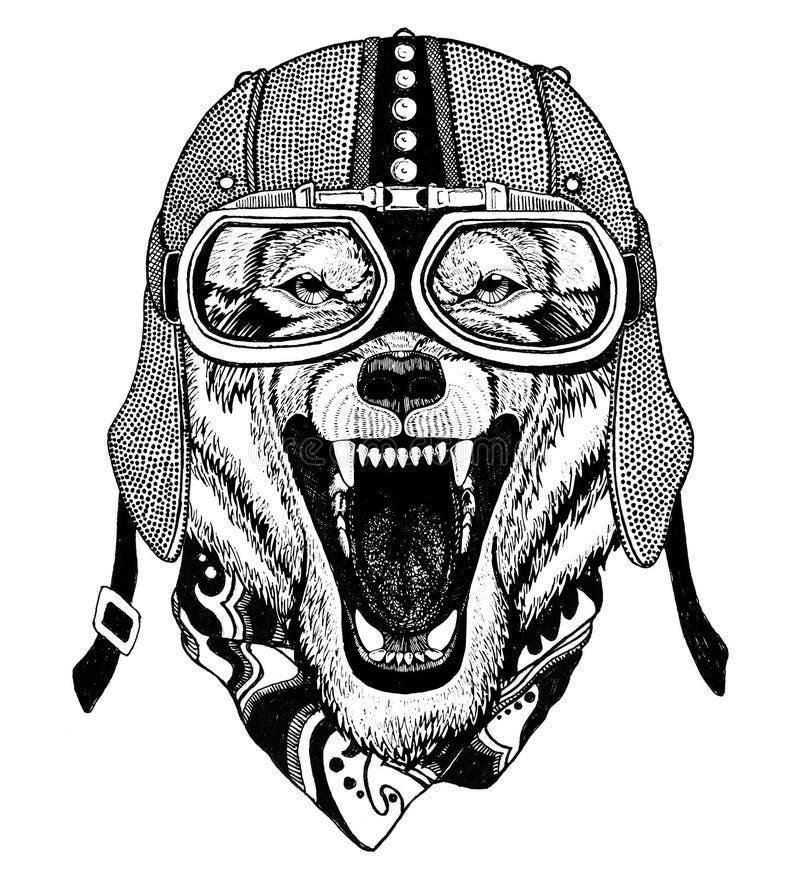 Weinlese-Bild des WOLFS für T-Shirt Design für Motorrad, Fahrrad, Motorrad, Rollerclub, aero Club stock abbildung