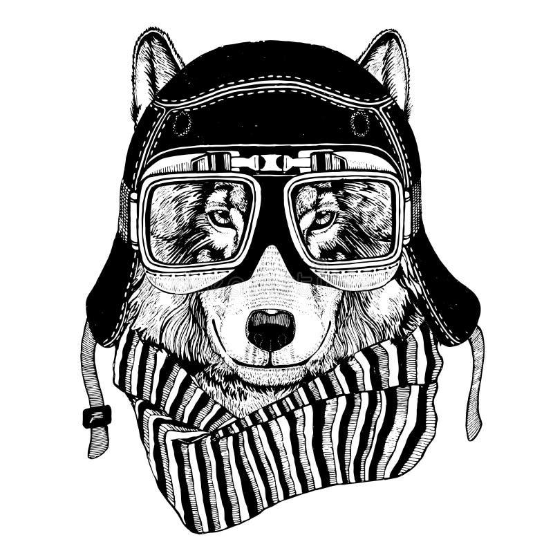 Weinlese-Bild des WOLFS für T-Shirt Design für Motorrad, Fahrrad, Motorrad, Rollerclub, aero Club lizenzfreie abbildung